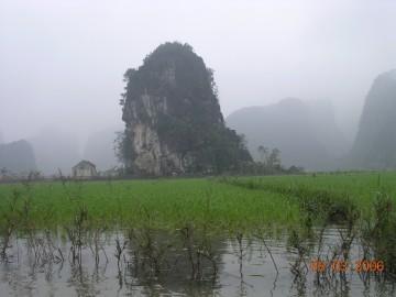 medium_Vietnam_2006_2_158.jpg