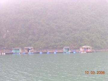 medium_Vietnam_2006_2_258.jpg