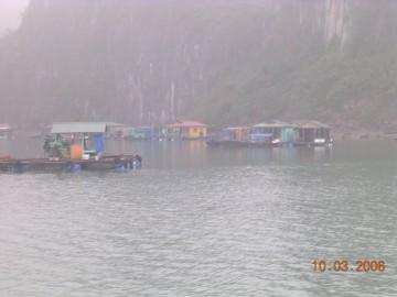 medium_Vietnam_2006_2_261.jpg
