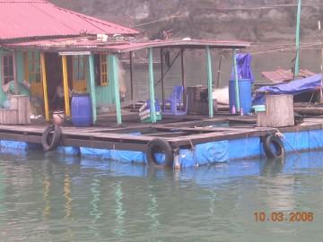 medium_Vietnam_2006_2_269.jpg