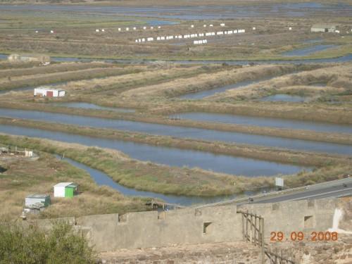 dadix portugal 2008 281.jpg