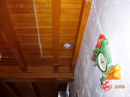 Noël 2009 003.jpg