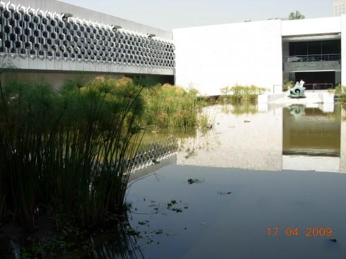 Mexico Avril 2009 450.jpg