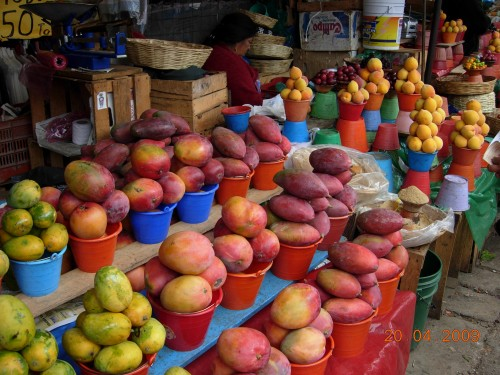 Mexico Avril 2009 256.jpg