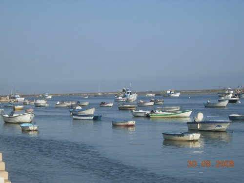 dadix portugal 2008 294.jpg