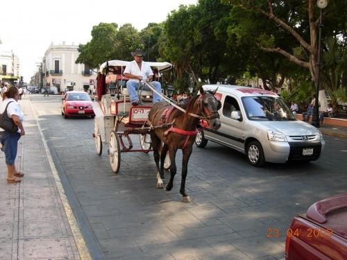 Mexico Avril 2009 139.jpg