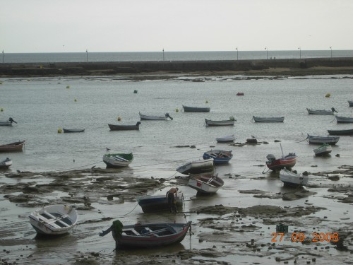 dadix portugal 2008 202.jpg