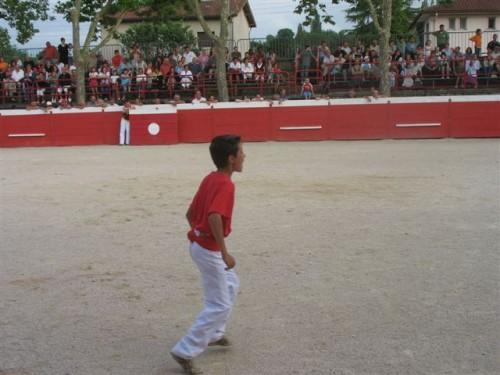 courses landaises 20 juillet 2008 (premier torillon) 035.jpg
