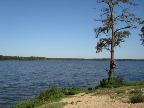 lac-de-biscarrosse-parentis-visoterra-20704[1].jpg