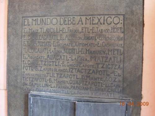 Mexico Avril 2009 494.jpg