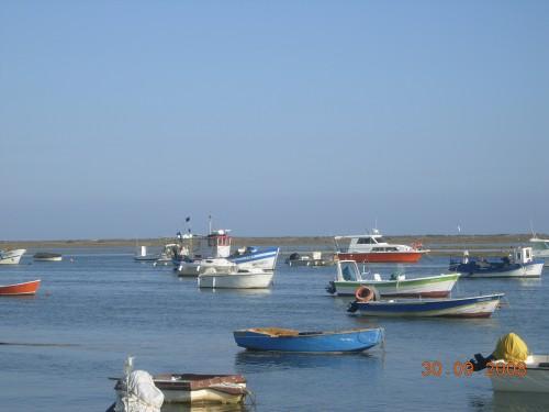 dadix portugal 2008 293.jpg