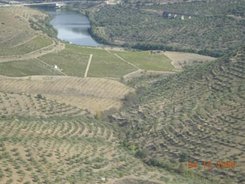 dadix portugal 2008 407.jpg