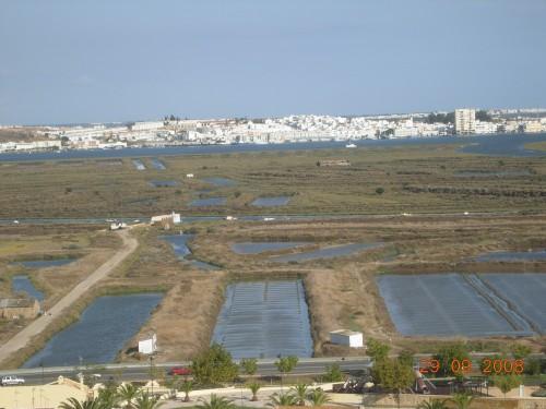 dadix portugal 2008 280.jpg