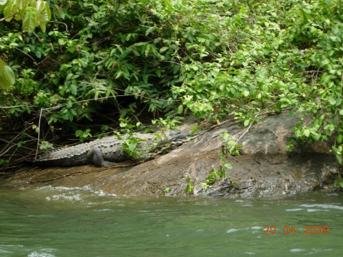 Mexico Avril 2009 248.jpg