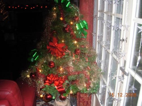 bon Noël 2008 006.jpg