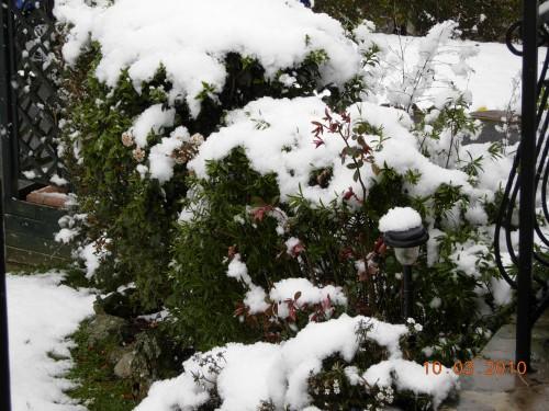 neige 003.jpg
