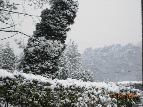 neige 004.jpg