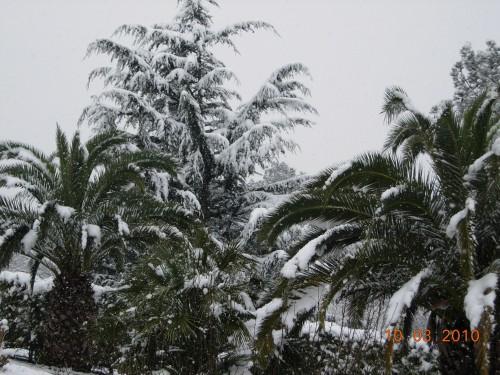neige 001.jpg